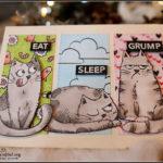 """[Werkeltisch] Geburtstagskarte mit Katzelkraft: """"eat, sleep, grump"""""""