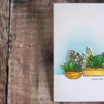 [Werkeltisch] Sukkulenten und Kakteen