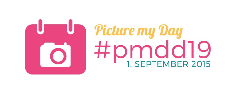 #pmdd19 Logo