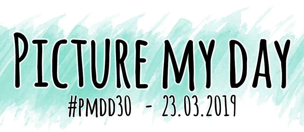 Logo: Picture my Day #30 - #pmdd30